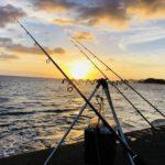 【和歌山】真夏の夜の堤防で「モンハン」?仕掛けや釣り方、ターゲットを公開